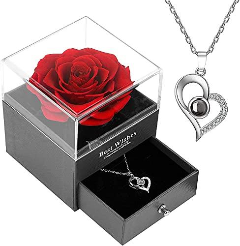 Caja de regalo de rosa roja encantada rosa real con collar I Love You 100 idiomas hecho a mano rosa conservada para ella en el día de la madre boda aniversario