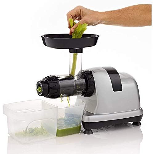 YONG Slow Masticating Juicer, Juicer Extractor and Nutrition Center Creates Fruit Vegetable, Juice Extractor, Delicate Design & Easy to Clean, Silver