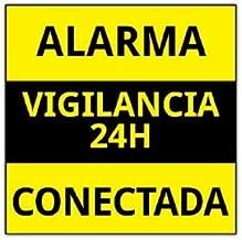 Amazon.es: pegatina alarma