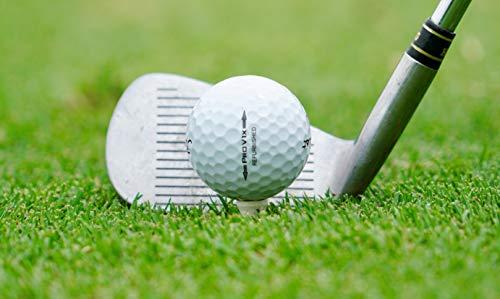 TITLEIST Pro V1/Pro V1X Mint Condition Refinished Golf Balls, Pack of 40 (White)