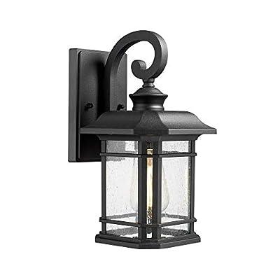 Emliviar Outdoor Wall Mounted Light, 2084B BK