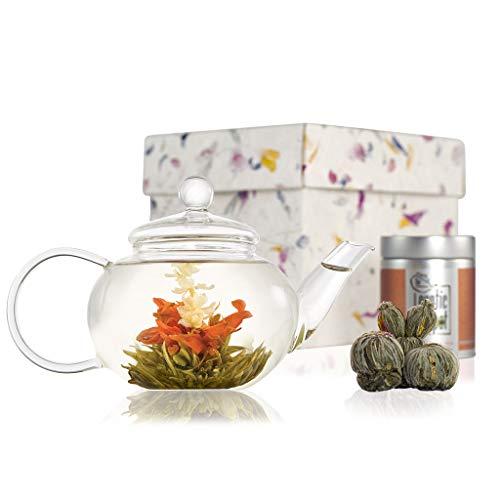 The Exotic Teapot - Classic Flowering Tea Gift Set, Glass Teapot with Infuser (600ml), Sampler Tin of 5 Blooming Teas, Handmade Gift Box
