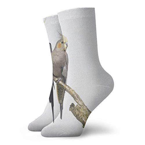 Warm-Breeze Cockatiel Compression Socks Unisex Socks Fun Casual Crew Socks Thin Socks Short Ankle For Outdoor Athletic Moisture Wicking