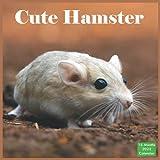 Cute Hamster Calendar 2022: Official Hamsters Calendar 2022, 16 Month Calendar 2022