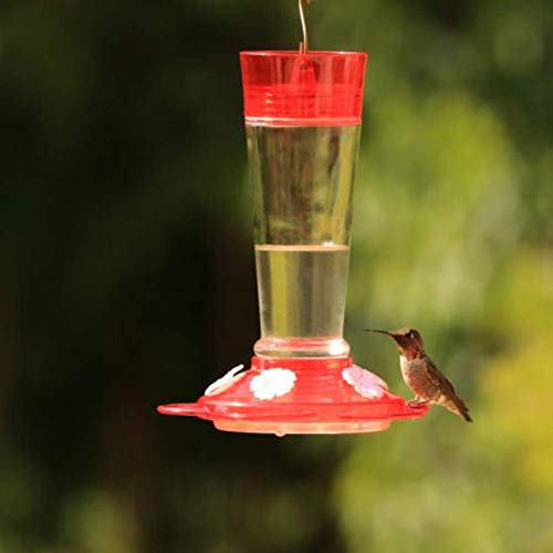More Birds Ruby Hummingbird Feeder, Glass Bottle, 5 Feeding Ports, 10-Ounce Nectar Capacity