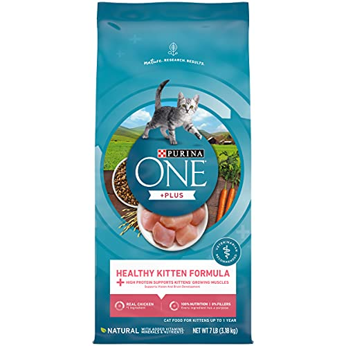 Purina ONE Natural Dry Kitten Food, Healthy Kitten - 7 lb. Bag