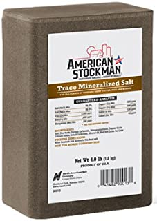 Trace Mineral Salt Block (Pack of 15)