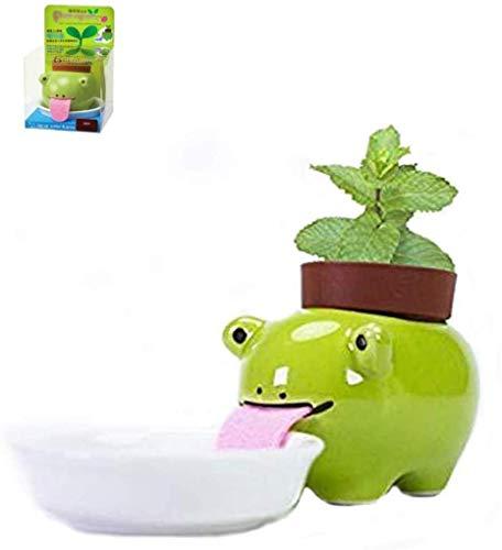 JHCtech - Vaso per piante autoirrigante, con lingua degli animali, in ceramica, con mini zaino (rana