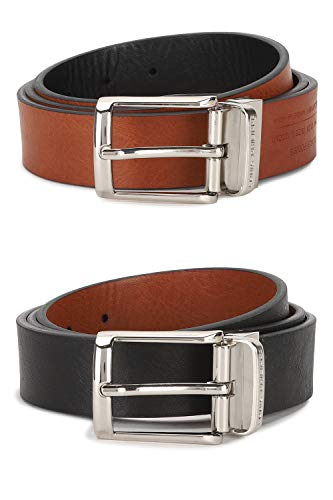 Louis Philippe Men's Belt (LPBLDRGFF00098_Brown_Large)