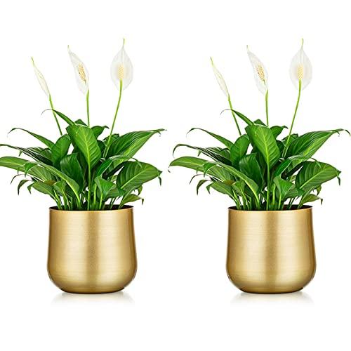 NUPTIO 2 Pièces Pot de Plante Vase en Or Pot de Fleur en Métal Vase avec Trou de Drainage, Organisateur de Stockage Moderne Cadeaux Décoratifs pour Mariage Intérieur Extérieur Balcon Affichage