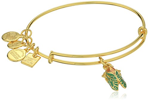 Alex and Ani Charity By Design Cicada Expandable Rafaelian Gold-Tone Bangle Bracelet