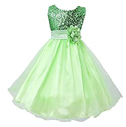 Green Sequin Mesh Tull Dress Sleeveless With Rose