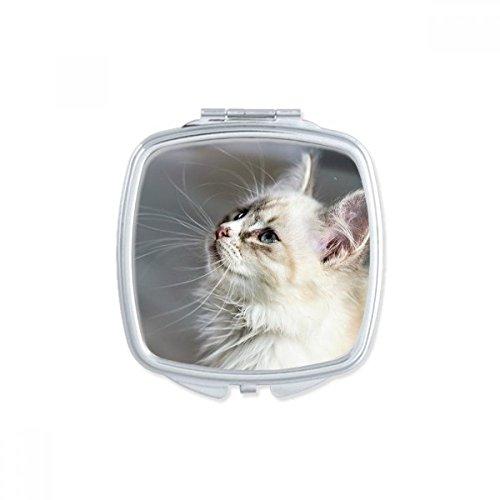 DIYthinker Blanc Pet Profil Animal Mignon de Chat Stare Place Makeup Compact Miroir de Poche Portable Mignon Petit Cadeau Miroirs Main Multicolore