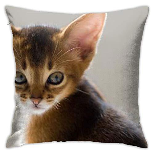 Cat (21) Funda de almohada cuadrada personalizada para sofá, dormitorio, oficina, 45,72 x 45,72 cm