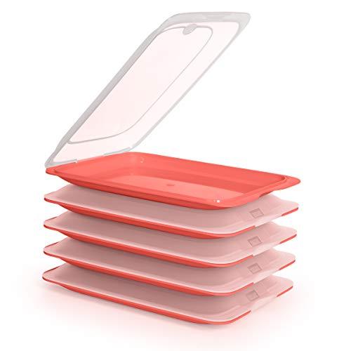 PracticFood Tatay Porta Embutidos y Alimentos Sistema Fresh, Conservación Optima de Lonchas en Nevera, Medidas 25.2 x 17 x 3.2 cm (5X Coral)