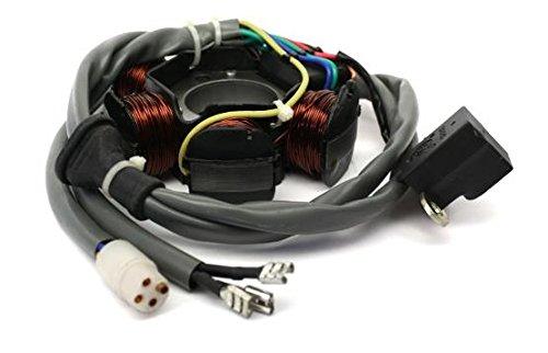 Lichtmaschine Anker Strator TPH NRG Zip Sfera Quartz Free, Gilera Runner Stalker