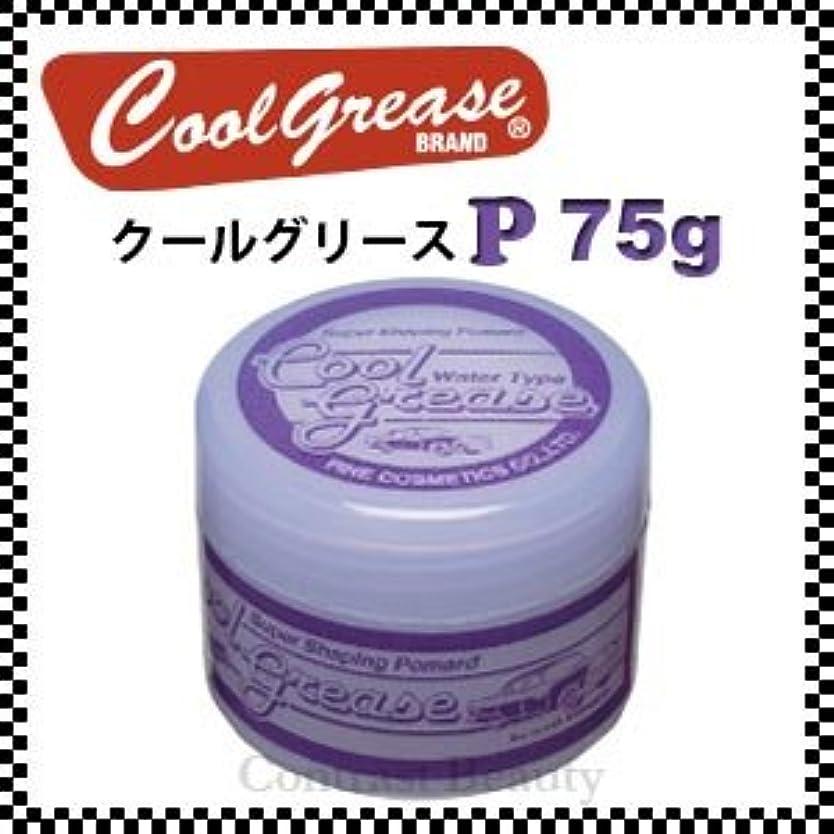 外部鍔何か【X4個セット】 阪本高生堂 クールグリース P 75g