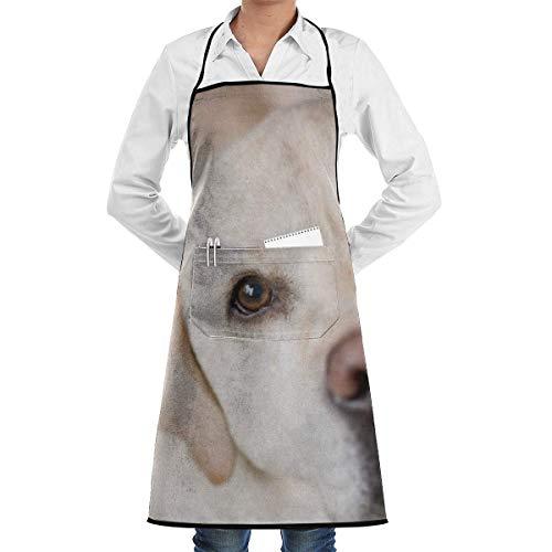 NA Dog Labrador Driverlayer Motore di Ricerca Grembiuli da Donna e da Uomo con Tasche per Chef, supermercati, Artigiani, Hotel e Altri Grembiuli da Ristorante durevoli Grembiuli da Tasca.