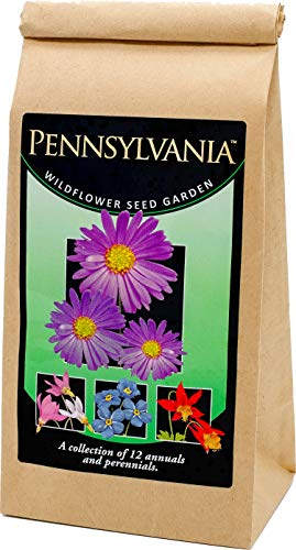 Pennsylvania Wildflower Seed Mix - A Beautiful Collection of Twelve annuals and perennials - Enjoy The Natural Beauty of Pennsylvania Flowers in Your own Home Garden