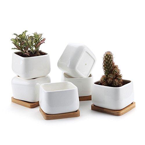 T4U Vaso per Pianta Grassa Vaso di Piante con Vassoio di bambù Bianco 10CM Ceramica Piazza Set di 6, Fioriere di Cactus Contenitori Vasi di Fiori Decorativo del Desktop Davanzale Bonsai