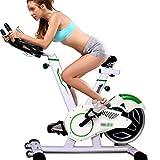 Fitness-Bike Spinning Bike Da Casa ,Home Bracciolo Regolabile Altezza Sedile Spin Bike, Cyclette Silenziosa Per Interni, Cuscinetto 100 Kg, Volano 9 Kg ( Color : Green+White , Size : 140*55*105 cm )