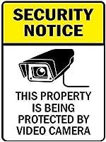 レトロなビンテージバー金属ティンサイン、ヤードフェンスガレージセキュリティ通知プロパティはビデオカメラ、面白いリビングルームバークラブガーデンコーヒーショップ壁アート装飾によって保護されています