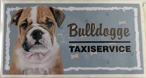 Pfronten-Schmuck Aufkleber Auto Taxiservice Hund Verschiedene Rassen 16 x 8,5cm (Bulldogge)