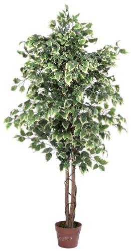 Artif-deco - Ficus artificiel 180 cm vert/blanc 1512 feuilles tronc nat - choisissez votre dimension: 180 cm vert-blanc