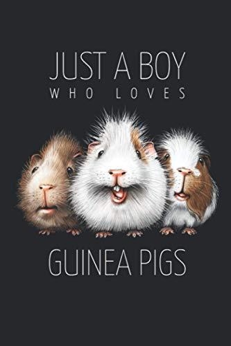 Cuaderno de cobaya: Solo un niño que ama los conejillos de Indias • Tamaño 6 x 9 pulgadas • 110 páginas • Rayado • Diario • Diario • Organizador • Diseño FD original