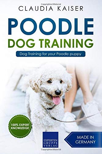 Poodle Training: Dog Training for your Poodle puppy