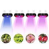 1000W Ajuste de la perilla LED Lámpara de Ia Planta Espectro completo Luz de la Planta Cuentas de Lámpara de Doble Núcleo para plantas de Interior Verdura Flores