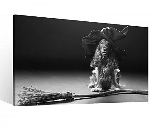 Leinwand 1Tlg XXL Hund Hexe Hut Hexenbesen Halloween Schwarz weiß Leinwandbild Bilder Bild Wandbild Holz 9S670, XL 1Tlg BxH:60cmx40cm