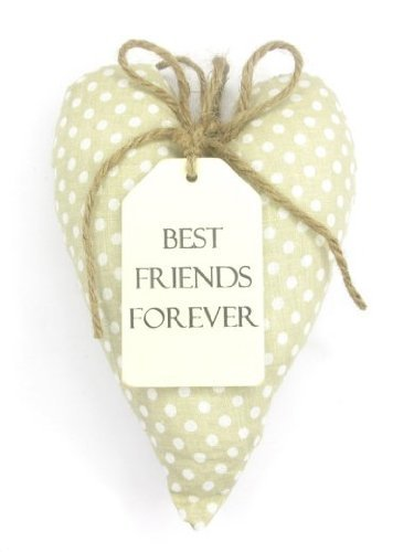 Sentiments Hanging Heart Cushion Best Friends Forever by Love Home