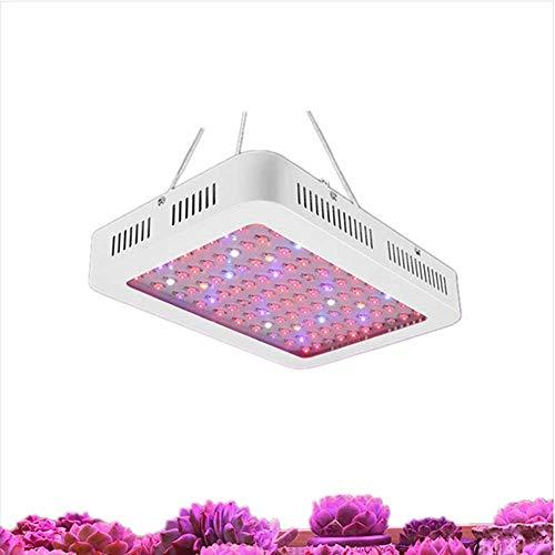 Dpliu Gute Qualität LED-Vollspektrum-Anlage Wachstum Lampe LED-Pflanzenlampe 1000W Blume Sukkulent-Fülllicht, Gewächshaus-Gemüse-Fülllicht-Hochleistungs-Anlage-Licht-Blumen- und Gemüse-Fülllicht