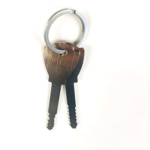 TPM Go 2 x Dietrichschlüssel für Schrankschloss, Autoschloss, Schubladenschloss