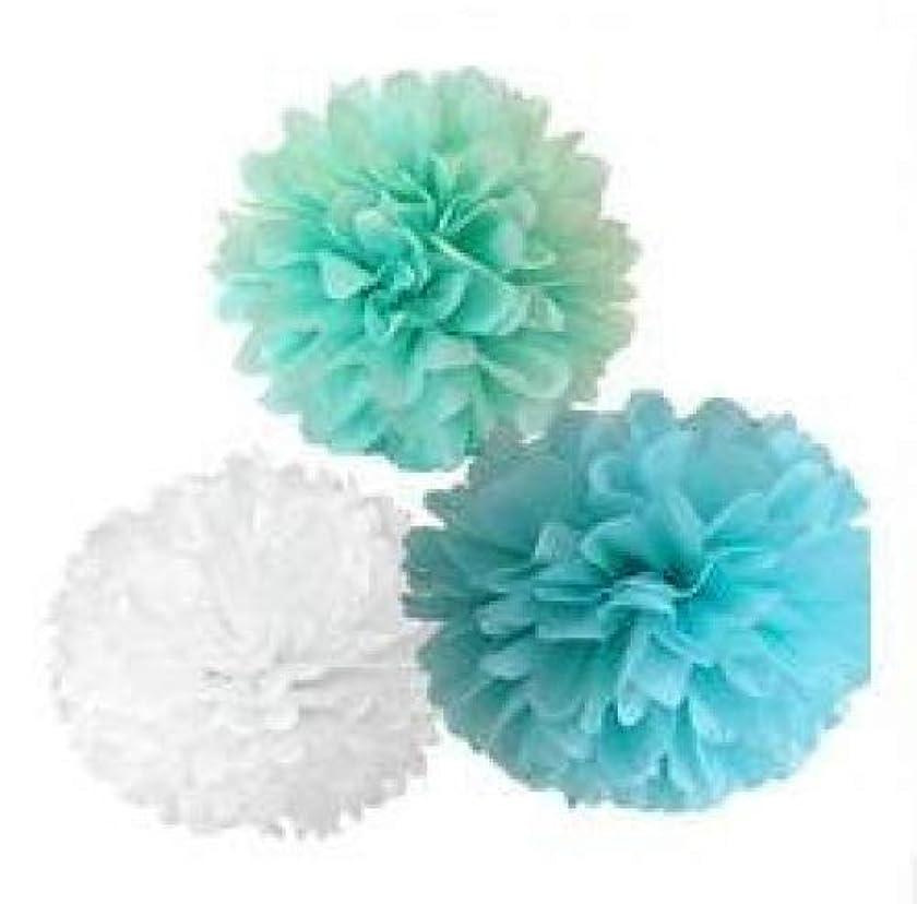 Since ? 12PCS Mixed Mint Blue White Paper Tissue Pompoms Pom Poms Flower Ball Wedding Birthday Party Decoration SIC-01750