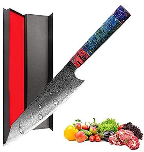 Promithi - Cuchillo de chef hecho a mano de 67 capas de damasco japonés VG10 de acero de alto carbono de 8 pulgadas, Kiritsuke Knife,Cortador de carne vegetal ergonómico mango de madera Au Hasard