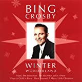 Songtexte von Bing Crosby - Winter Wonderland