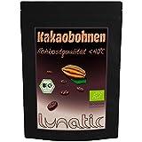 BIO Kakaobohnen Roh 1kg