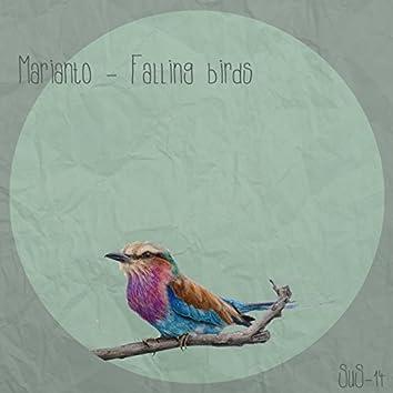 Falling Birds