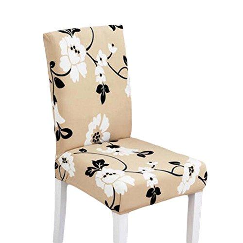 Blancho Chaise d'étirage à 2 pièces Housse de Chaise à épaulement Housse à épiler en Tissu Spandex Lavable
