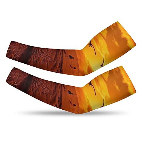 Manguitos de brazo (un par) Soporte de protección UV elástico antideslizante calentadores de brazo mangas de protección solar mangas de compresión para cubrir los brazos sf-ad1-70