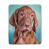 My Daily Hungarian Vizsla Brown Dog Throw Blanket Polyester Microfiber Lightweight Couch Bed Blanket 50x60 inch