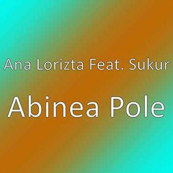 Abinea Pole