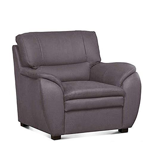 Cavadore Sessel Gingle im hochwertigem Mikrofaser-Bezug in Wildlederoptik / TV-Sessel mit Federkern fürs Wohnzimmer / Passend zur Sofagarnitur Gingle /...