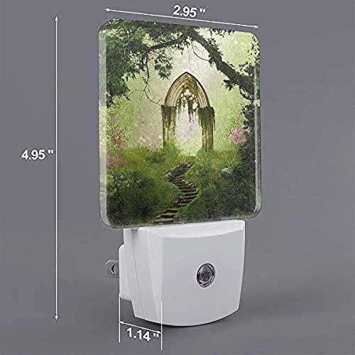 Antieke ouderwetse fantasiedeur automatisch aan/uit LED-nachtlamp-US_wit