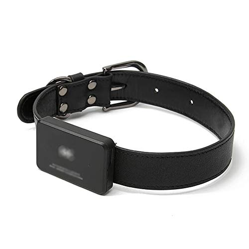 PULLEY Collar inteligente para mascotas, localizador en tiempo real, mini dispositivo inteligente antipérdida, adecuado para perros y gatos medianos y pequeños (tamaño: 55 cm)