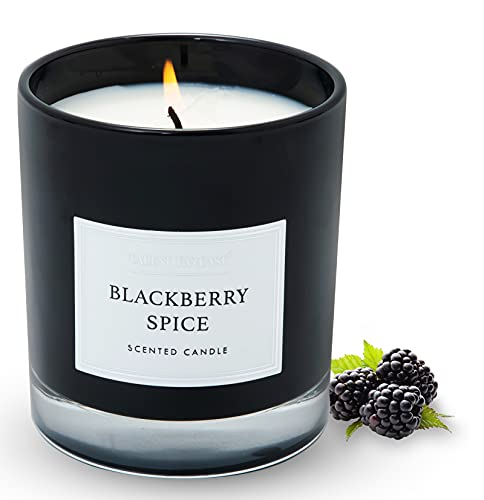 Candles for Home Scented, 8.8oz BlackBerry Spice Aromatherapy Candles Scented with Long Lasting Burning, Highly Home Scented Candles for Stress Relief Relaxation, Jar Candle Gifts for Women Men