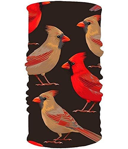 Neck Headwrap Headband Red Birds Headwear Sport Sweatband Yoga Head Wrap For Men Women