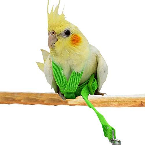 Ishine Arnés de pájaro para cacatúa, correa de cuerda de pájaro, cuerda elástica, suministros de entrenamiento para mascotas aves loros